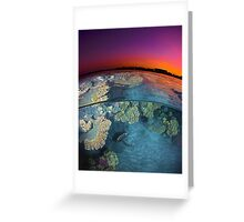 Dusk at the Red Sea Reef Greeting Card