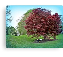 Sketching Under The Red Maple - Grounds for Sculpture Canvas Print