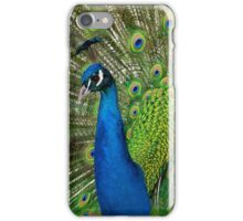 Peacock close up iPhone Case/Skin