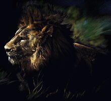 A Lion by John N.  Stewart