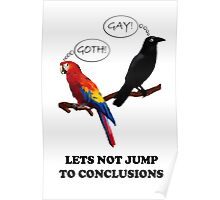 Let's Not Jump to Conclusions Poster