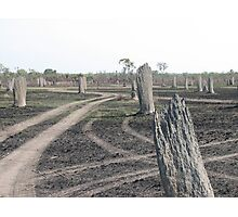 Magnetic Termite Mounds Photographic Print