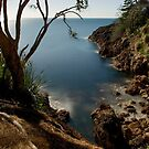 Coromandel Coast at night by Paul Mercer