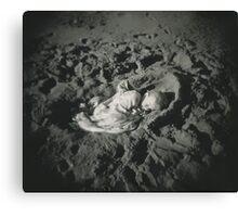 Sand Cradle Canvas Print