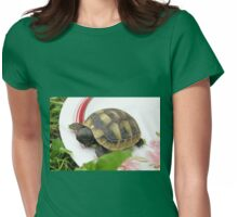 Baby Eastern Hermann's Tortoise at Home Womens Fitted T-Shirt