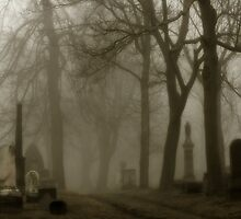 The Road  by gothicolors