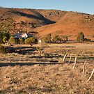 Old Paney Homestead, Gawler Ranges NP by Blue Gum Pictures