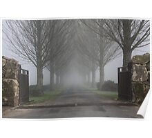 Foggy Drive Poster