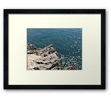 Cliff Edge Framed Print