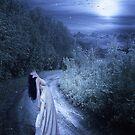 Keep Wishing On Stars... by myoriginalsin