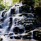Sylvia Falls by chriso
