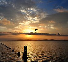 Late Sunset over Belmont Bay - Lake Macquarie NSW by Bev Woodman