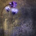 Simplicity by Myillusions