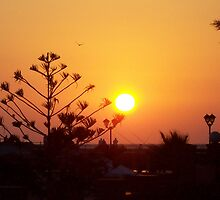 Egyptian Sunset by Sara82