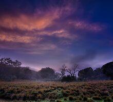 ...first light - Mt Clear... by Geoffrey Dunn