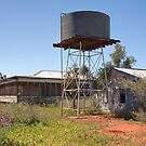 Newchum Homestead, Abandoned in the 1960s by Blue Gum Pictures