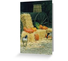 Geese and the Pumpkins Greeting Card