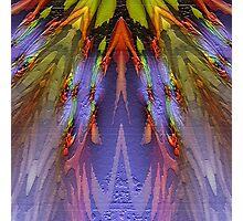 Phoenix Feathers 2000 Photographic Print