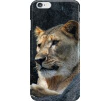 The Lioness iPhone Case/Skin