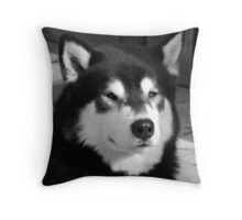 Look of the North Throw Pillow