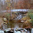 Near Crabtree Falls  ^ by ctheworld