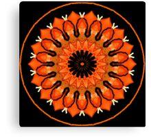 A Slice Of Citrus..Kaleidoscope Canvas Print