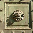 Wild doorknocker by bubblehex08
