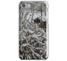 Bird house iPhone Case/Skin