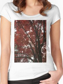 Autumn Red Maple Tree Foliage Women's Fitted Scoop T-Shirt