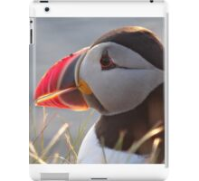 Puffin 11 iPad Case/Skin