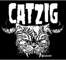 catzig Photographic Print