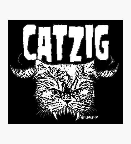 catzig Photographic Print