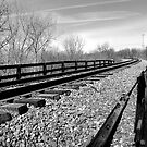 Old Train Bridge by Richard Skoropat