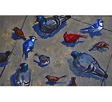 Birds on the Street Photographic Print