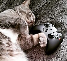 Gaming Catnap by Tarak