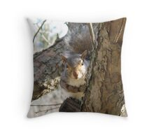 The One, The Only, Lady Grey Throw Pillow