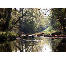 The Young Nidd Photographic Print