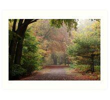 Dreamy Paths of Autumn Gold Art Print