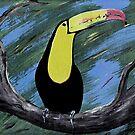 Tucan by David  Postgate