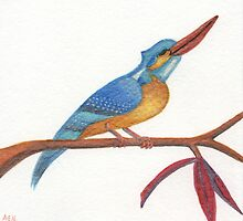 Kingfisher by Amy-Elyse Neer