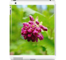 Macro Flower iPad Case/Skin