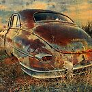 Homeless Packard by Sherry Adkins