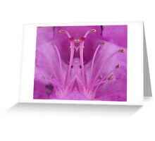 Magnolia Crown Greeting Card