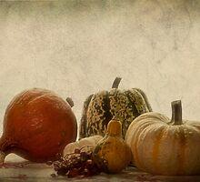Pumpkin still life by Priska Wettstein