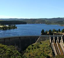 Myponga Reservoir (upper side 5) by ScenerybyDesign