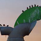 windcowl starlings by lukasdf