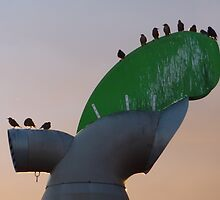 windcowl starlings by lukasdf