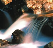 WATER AND LIGHT by Chuck Wickham