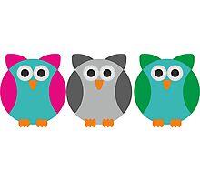Owls (Pattern #2)  Photographic Print