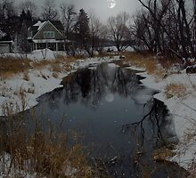 A Snowy Winters Night by Tizme